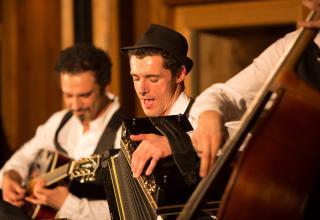 Herbert Pixner Projekt, Harmonika, Volksmusik